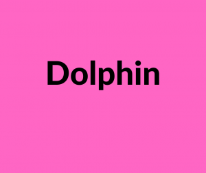 Dolphin Software Link